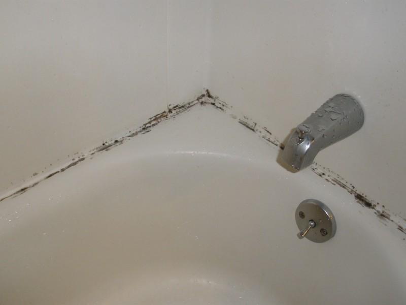 Dieser Haushaltstrick entfernt Schimmel im Bad und ist so leicht ...