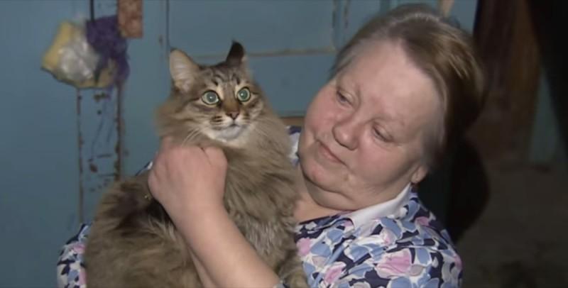 Langhaar-Katze findet ausgesetztes Baby.