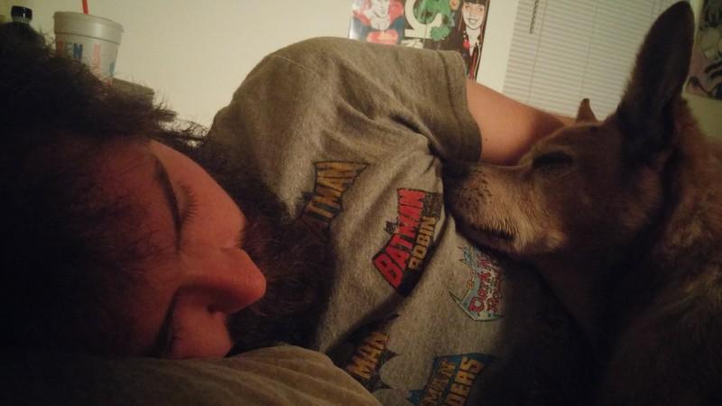 Sieben gute Gründe, deinen Hund ins Bett zu lassen.