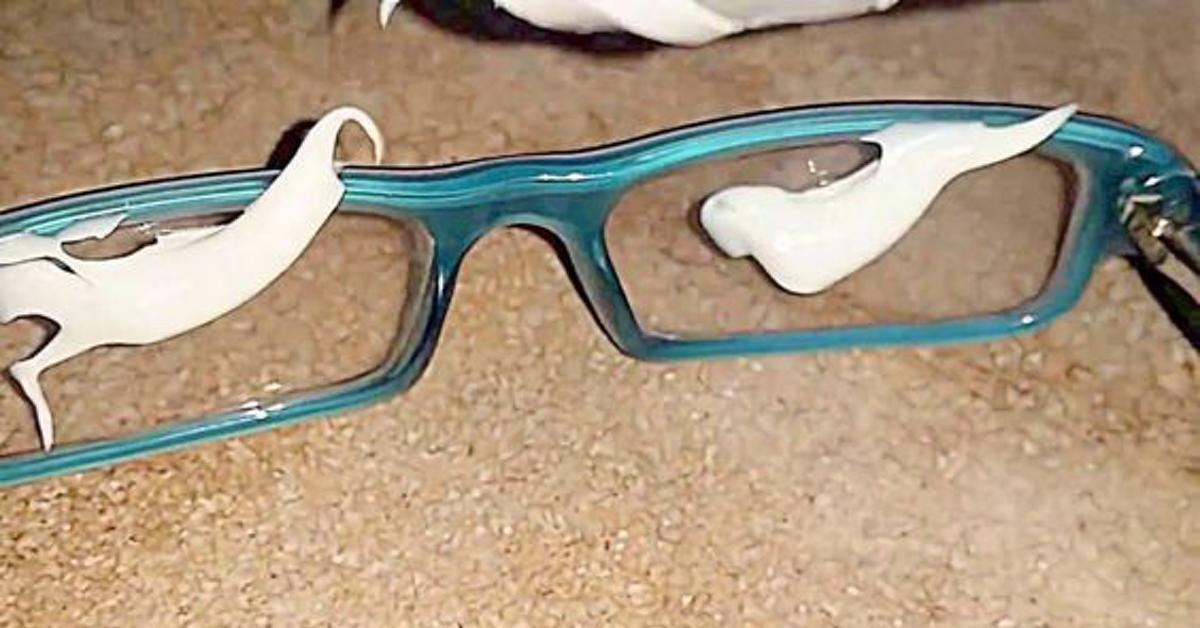 ich schmiere zahnpasta auf meine brille wenn du siehst. Black Bedroom Furniture Sets. Home Design Ideas