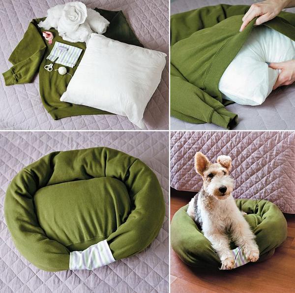 geniale tricks f r hundebesitzer uringeruch entfernen. Black Bedroom Furniture Sets. Home Design Ideas