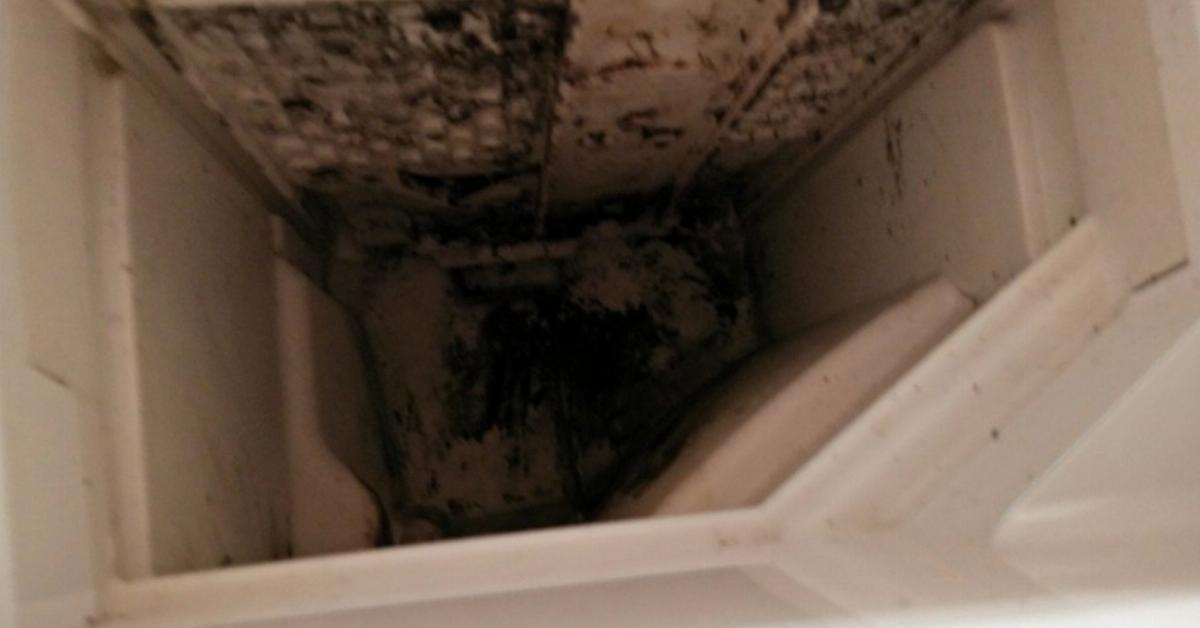 wie man eine waschmaschine wirklich sauber bekommt. Black Bedroom Furniture Sets. Home Design Ideas