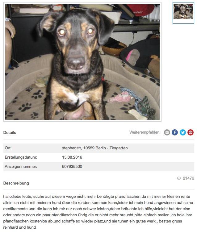 Berliner Rentner Sammelt Uber Ebay Pfandflaschen Fur Hunde Medikamente