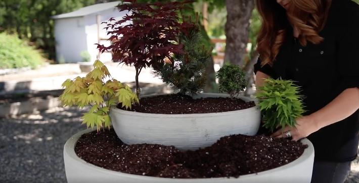 Diy Projekt Aus 2 Schalen Wird Kleiner Zen Garten