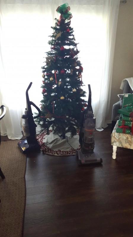 22 clevere tierhalter sch tzen ihren weihnachtsbaum. Black Bedroom Furniture Sets. Home Design Ideas