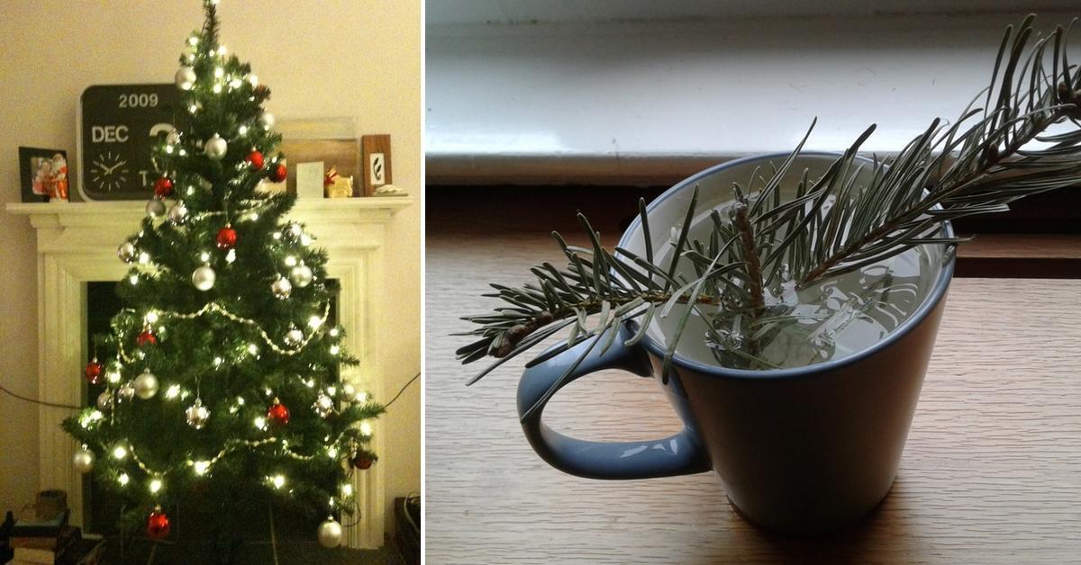 Upcycling Total Ausgedienten Weihnachtsbaum Weiterverwenden